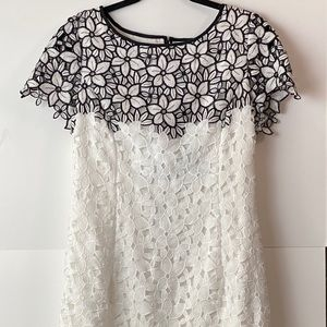 Nue by Shani lace dress above knee  b/white 12